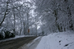 snow road 2