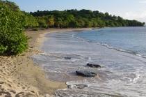 Windward Bay