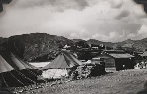 Tret 1946